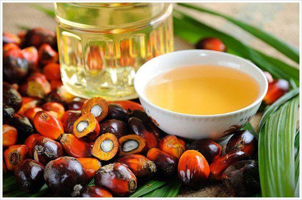 Por qué el aceite de palma puede ser perjudicial para la salud