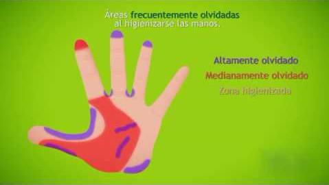 zonas de la mano olvidadas con el lavado quirúrgico
