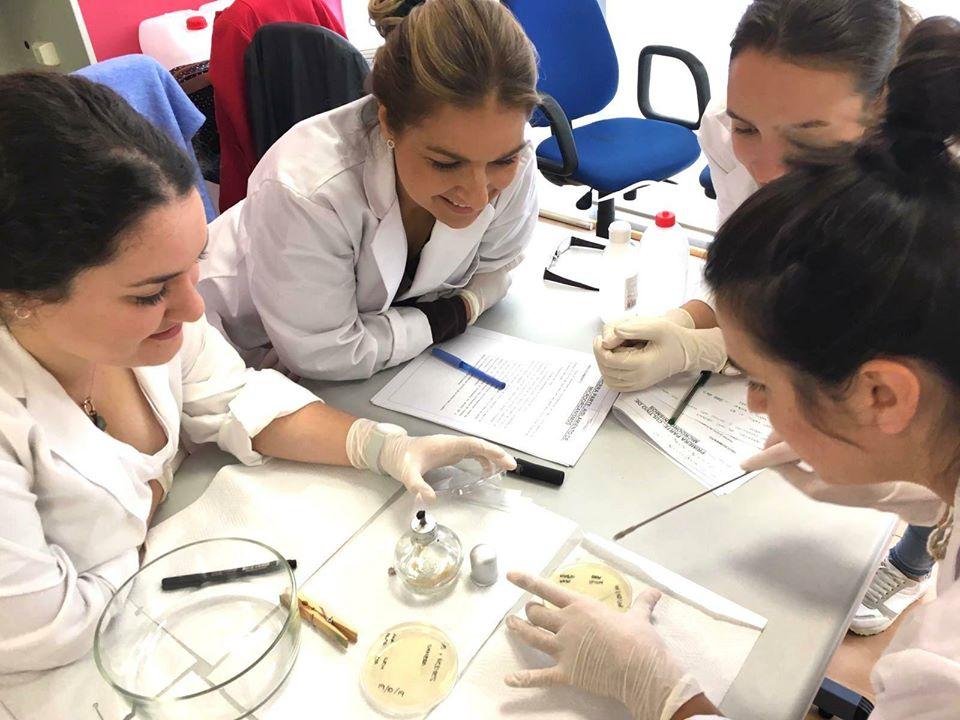 cultivo microorganismos